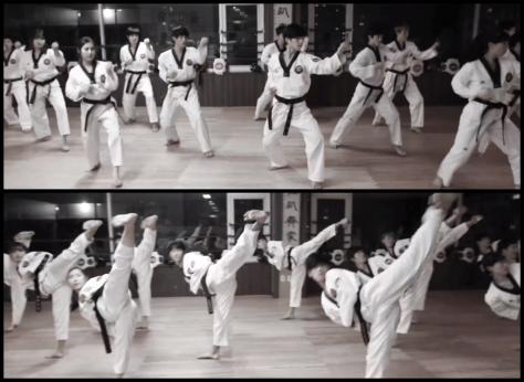 Ringa Linga- Taekwando Kick